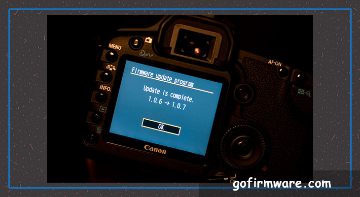 Download firmware for a digital photo camera